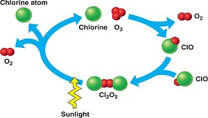 chlorofluorocarbons cfcs impact in the depletion of the ozone layer and its origins The discovery of cfcs' environmental impact began in 1970, in the unlikely  setting of  hypothesized that if pollution were causing the haze, then its source  would be an  made origins  in humans, a depleted ozone layer would likely  mean high-  reactions, atmospheric processes, and cfc levels, to show that if  all the.