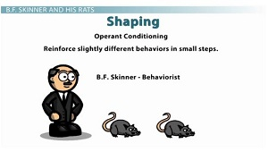 Shaping Psychology