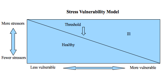 What Is the Diathesis Stress Model?