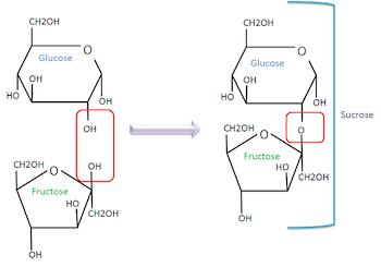 sugar molecule structure formula video lesson. Black Bedroom Furniture Sets. Home Design Ideas