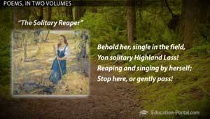 an analysis of poetic devices in william wordsworths the solitary reaper The solitary reaper essay stylistic analysis on the solitary reaper 'the solitary reaper is one of william wordsworth's most famous post-lyrical ballads lyrics it describes the poet's delight in a young woman's melancholy song in an unknown language.