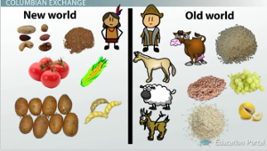 columbian exhange notes study guide Animals the americas got cattle, sheep, goats, pigs, and many other animals from columbian exchange they had a few domesticated animals even before columbus arrived.
