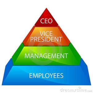 Define the term organizational structure