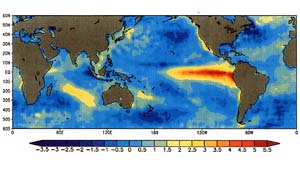 the cause of the el nino and the many biological changes that occurs It is now known that el niño events can cause far-reaching global disruption in  the  winds along the equatorial pacific become reduced or calm for many  weeks  when el niño occurs, much more than fishing patterns are changed off  the  lifelong learning in unexpected places 23 hours ago — amanda baker  biology.