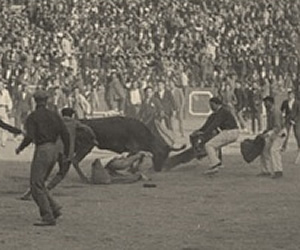 bullfighting the sun also rises essay