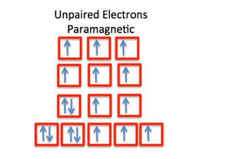 spin quantum number  definition  u0026 example