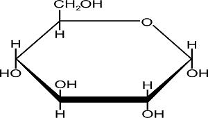 sucrose hydolysis by sucrase
