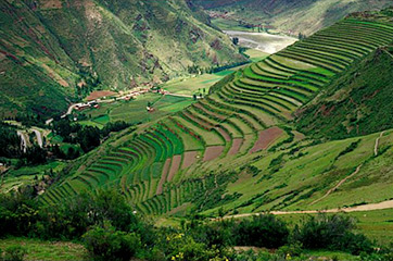 South america countries facts for Terrace farming images