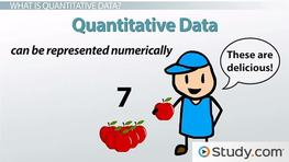 Quantitative research method definition
