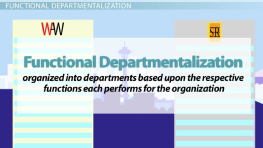 introduction to departmentalization Study flashcards on introduction to business at cramcom if the type of departmentalization used by an organization tends to emphasize introduction.