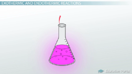 What Does an Endothermic Reaction Look Like