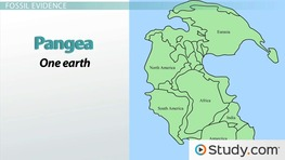 an analysis of the continental drift theory to geological earths geological positioning Browse all of the usgs publications warehouse by following a link tree  browse the usgs publication warehouse  and geological approaches,.
